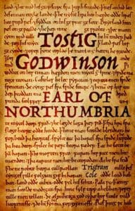 An example of a historical novel Tostig Godwinson, Earl of Northumbria by Tristram Cole, book cover design by Design for Writers